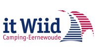 12_it_wiid_logo.png